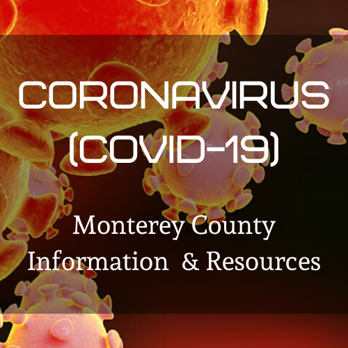 Health Information for Flu and Coronavirus